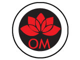OM Bearing Co., Ltd. Ball Bearings