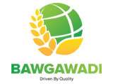 Bawgawadi Co., Ltd. Vehicle Spare Parts