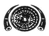 https://www.automobiledirectory.com.mm/digital-packages/files/e8559958-bc9b-4e24-94a4-bbf62680427c/Logo/Shwe-Phar-Si_Workshops_56_LG.jpg